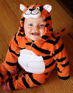 Sophie the Tiger