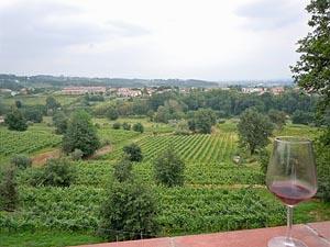 The Buonamico Wine Estate