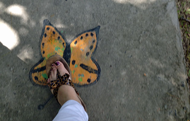 Entering The Butterfly Farm