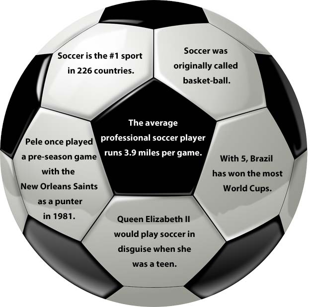 An american 39 s guide to the 2014 world cup the cruise web for Good facts about america
