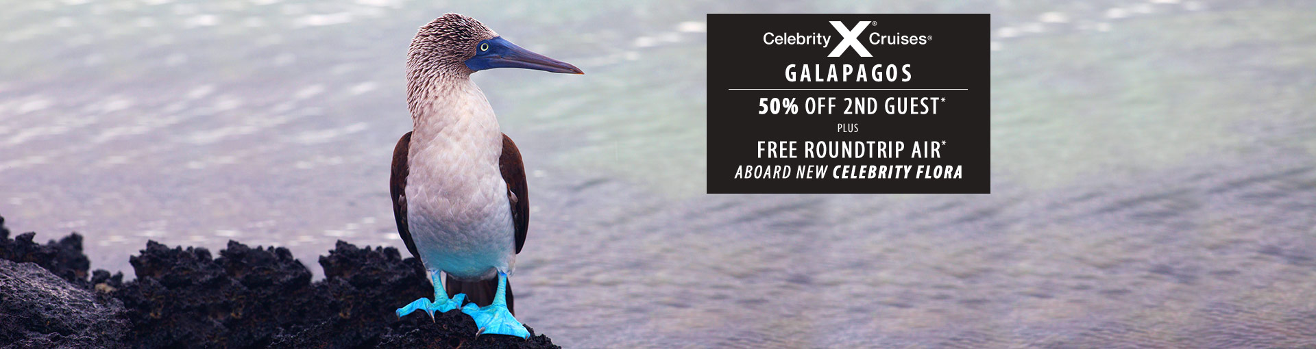 Celebrity Cruises: 50% Off 2nd Guest + Flights Included