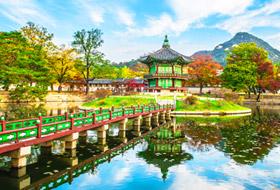 Garden in South Korea